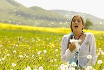 È primavera: oltre agli amori sbocciano anche le allergie. Ecco alcuni consigli per tenerle sotto controllo