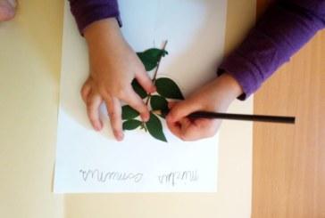 """""""Un orto di carta"""": l'orto botanico di Catania apre per un nuovo evento"""