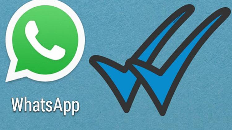 whatsapp aggiornamento catene