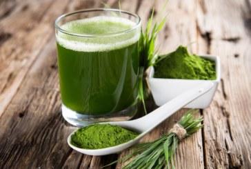 Alga spirulina: benefici e proprietà dimagranti